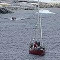 Antarctica - panoramio (121).jpg