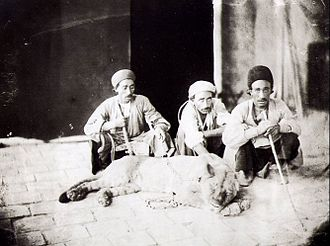 Zagros Mountains - Men with a restrained lion in Iran. This photograph was taken by Antoin Sevruguin, ca. 1880, before the lion's extirpation in the country.