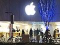 Apple Store Naogya Sakae and Illuminated tree - 2.jpg