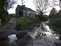 Approaching Treyford on the lane from Elsted Marsh - geograph.org.uk - 1722082.jpg