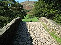 Arched footbridge - geograph.org.uk - 989407.jpg