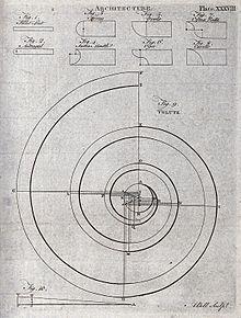 Volute — Wikipédia