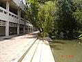 Asian Institute of Technology - panoramio.jpg
