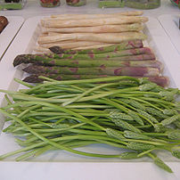 Two kinds of Asparagus officinalis (asparagus)...