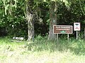 Assenoncourt (Moselle) forêt domaniale d'Assenoncourt, du côté de Desseling.jpg