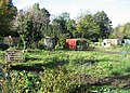 Assorted allotments sheds - geograph.org.uk - 1079361.jpg