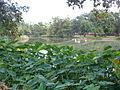 Audubon Park 9.24.09 009.jpg