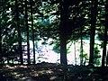 August Mount Kandel Masif Hochschwarzwald - Master Black Forest Photography 2014 - panoramio (9).jpg