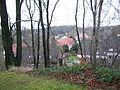 Aussicht vom Burgberg auf Rönneburg.JPG