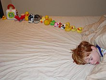 Young boy asleep on a bed, facing the camera, with only the head visible and the body off-camera. On the bed behind the boy's head is a dozen or so toys carefully arranged in a line, ordered by size.