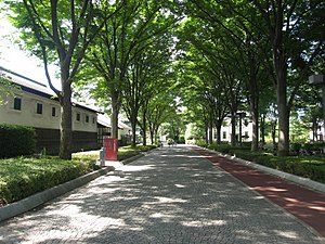 Avenue in Kyodo no Mori Museum.JPG