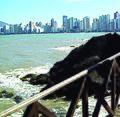 BALNEÁRIO CAMBORIÚ (Pontal Norte), Santa Catarina, Brasil by Maria de Lourdes Dalcomuni (Ude) - panoramio (10).jpg