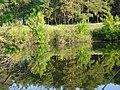 Backwater Primorskij.jpg