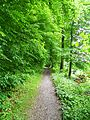 Baden, Suiza - panoramio (14).jpg