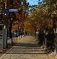 Baghramyan Avenue & Kaputikyan street sign.jpg