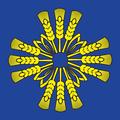 Baraflag.png