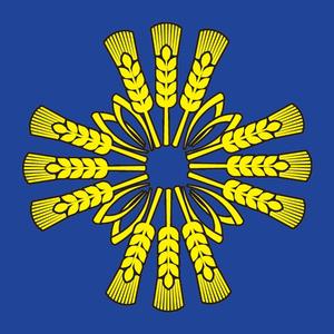 Barajevo - Image: Baraflag