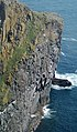 Barra Head Cliffs.jpg
