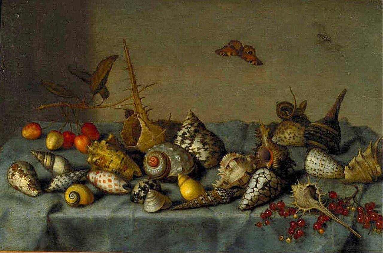 Coquillages et peinture 1280px-Bartholomeus_van_der_Ast_still_life_with_shells
