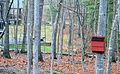 Bat box near cabins (8553619013).jpg