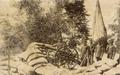 Bateria do Exército 1893.png