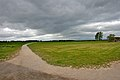 Battle of Culloden battlefield 2009.jpg