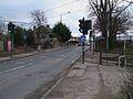 Beddington Lane tramstop level crossing look south.JPG