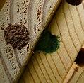 Bee box (34710663903).jpg
