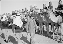 Beersheba, inspection of Camel Corps by H.E. (i.e., His Excellency) Sir Harold McMichael. H.E. (i.e., His Excellency) inspecting Camel Corps, close up LOC matpc.20056.jpg