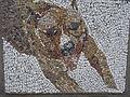 Belgrade zoo mosaic0452.JPG