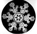 Bentley Snowflake11.jpg