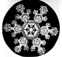Bentley Snowflake11.jpg