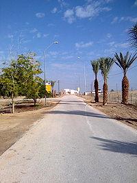 הכביש הראשי בבית הערבה