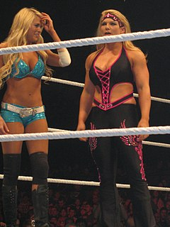 Feud (professional wrestling) staged rivalry between wrestlers in professional wrestling