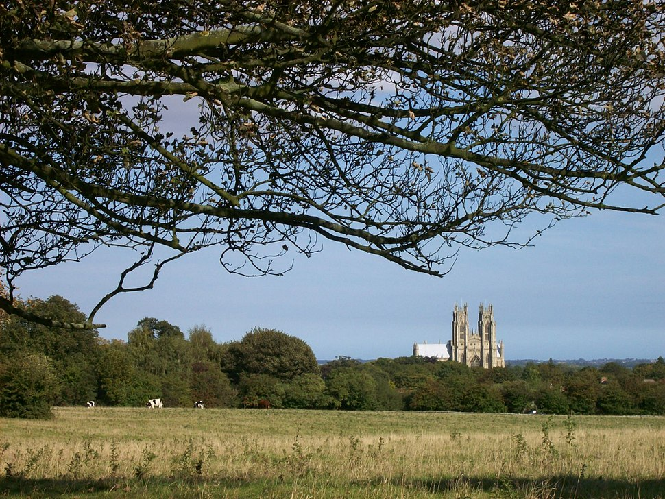 Beverley Minster from West Pasture