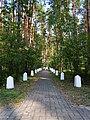 Biłgoraj, krzyż w lesie Rapy.jpg