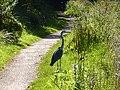 Birmingham Along the Canal - panoramio.jpg