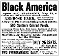 Black America Ad from the New York Clipper 1895.jpg