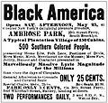 Black America Ad from the New York Clipper 1895.jpg