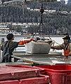 Black Cod Tote unload wc2.jpg