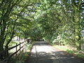 Blind Lane, Little Bursted, Essex - geograph.org.uk - 49411.jpg