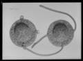 Blinda sadel nr 9 franska gåvan - Livrustkammaren - 36199.tif