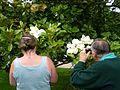 Blumen2007.jpg