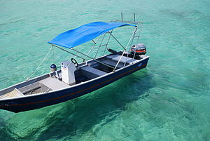 Tioman Island - Boat on clear water at salang