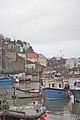 Boats at Polperro 1.jpg