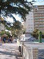 Borja 05.jpg