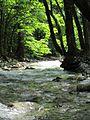 Boulder creek.jpg