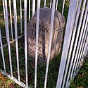 Boundary Stone (District of Columbia) NE 5.jpg