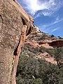 Boynton Canyon Trail, Sedona, Arizona - panoramio (91).jpg