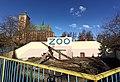 Braniewo zoo wybieg niedźwiedzi katedra.jpg